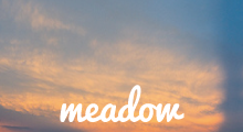 Meadow - Stylish WordPress Theme Blog